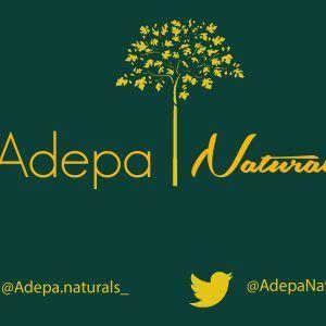 AdepaLogo2